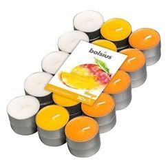 Geurtheelicht multi colour brick 30 Mango