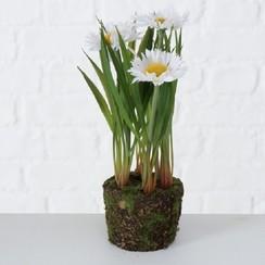 Boltze Home Kunstplant H 20 cm