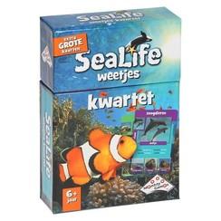IdentityGames Weetjes kwartet Sealife