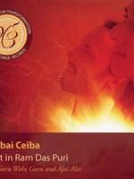 Mirabai Ceiba Meditations for Transformation   Night In Ram Das Puri