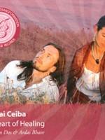 Mirabai Ceiba Meditations for Transformation   The Heart of Healing - 2nd Chance