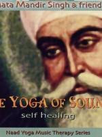 Mata Mandir Singh & Friends The Yoga of Sound   Self Healing - 2nd Chance