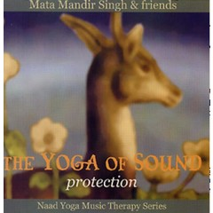 Mata Mandir Singh & Friends The Yoga of Sound | Protection - 2nd Chance