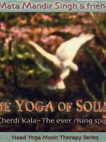 Mata Mandir Singh & Friends The Yoga of Sound   Cherdi Kala, the Ever Rising Spirit - 2nd Chance