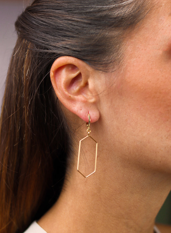 Gold plated Hexagon earrings