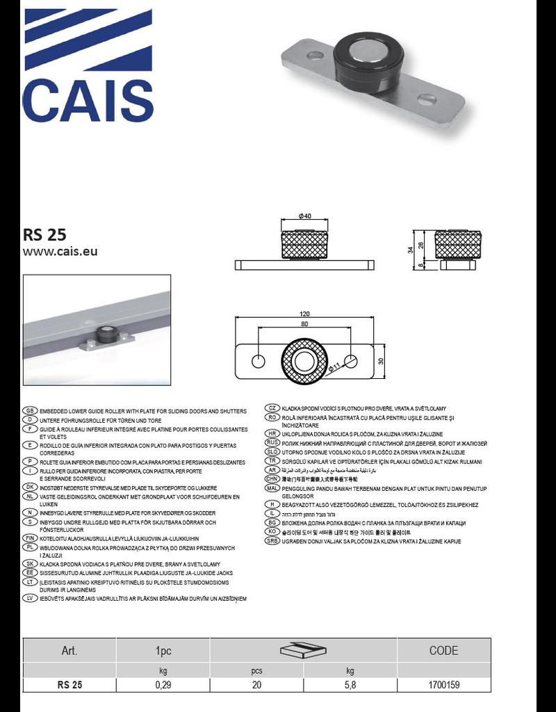 CAIS Vaste geleidingsrol onderkant met grondplaat