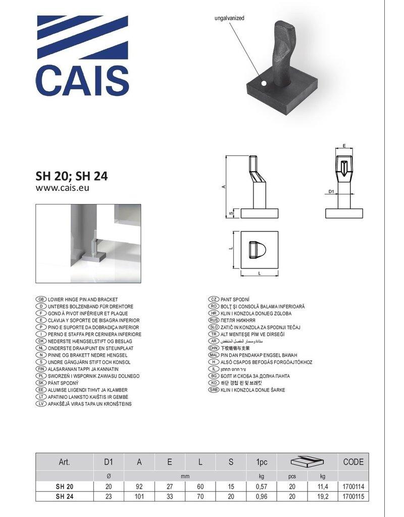 CAIS Gond à pivot inférieur et plaque
