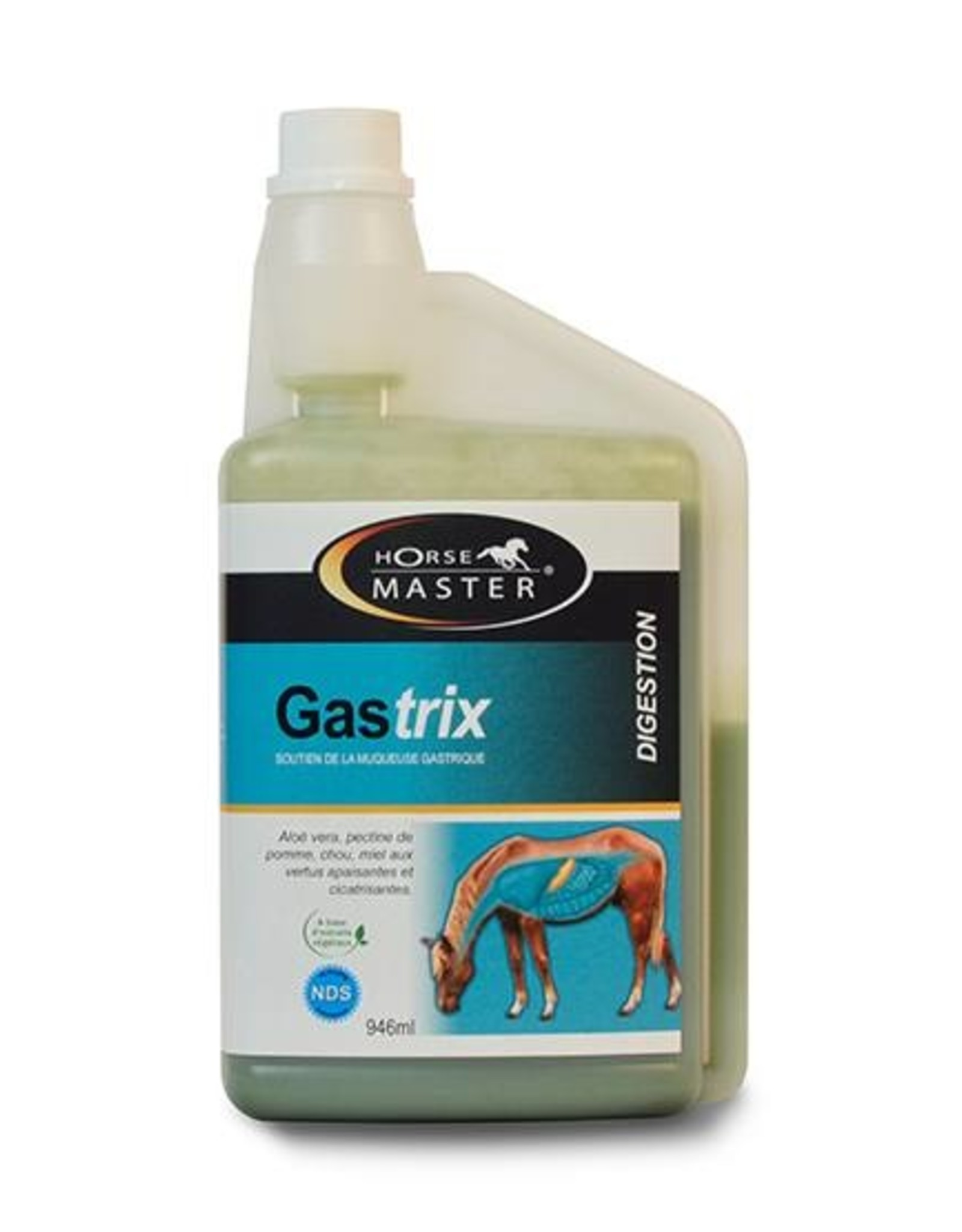Horse Master Gastrix