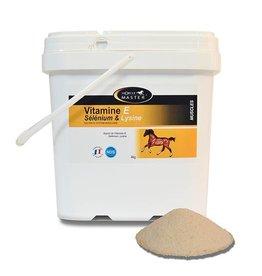 Horse Master Vitamin E - Selenium - Lysine Powder