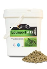 Horse Master Equisport 4.13