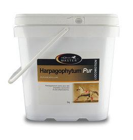 Horse Master Harpagophytum Pur