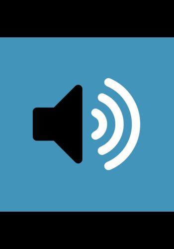 Apple iPhone XS – Luidspreker reparatie