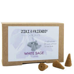 Witte Salie cones (Jiri and Friends)