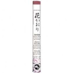Japanse Rol Kersenbloesem -EK661A