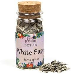 Witte Salie wierookkruid (6 gram - 30 ml)