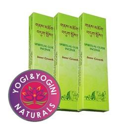 Himalaya spiritual guide wierook