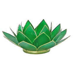 Lotus sfeerlicht groen 4e chakra goudrand