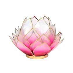 Lotus sfeerlicht roze/lichtroze goudrand groot