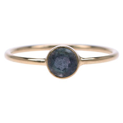 Zilveren ring Labradoriet  (Goud plated)