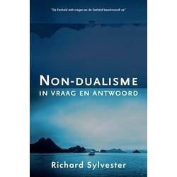 Non-dualisme in vraag en antwoord