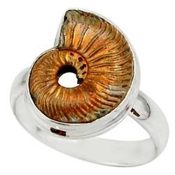 Zilveren ring Geopaliseerde Ammoniet