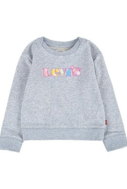 LEVIS - LVG GRAPHIC CREW SWEATSHIRT