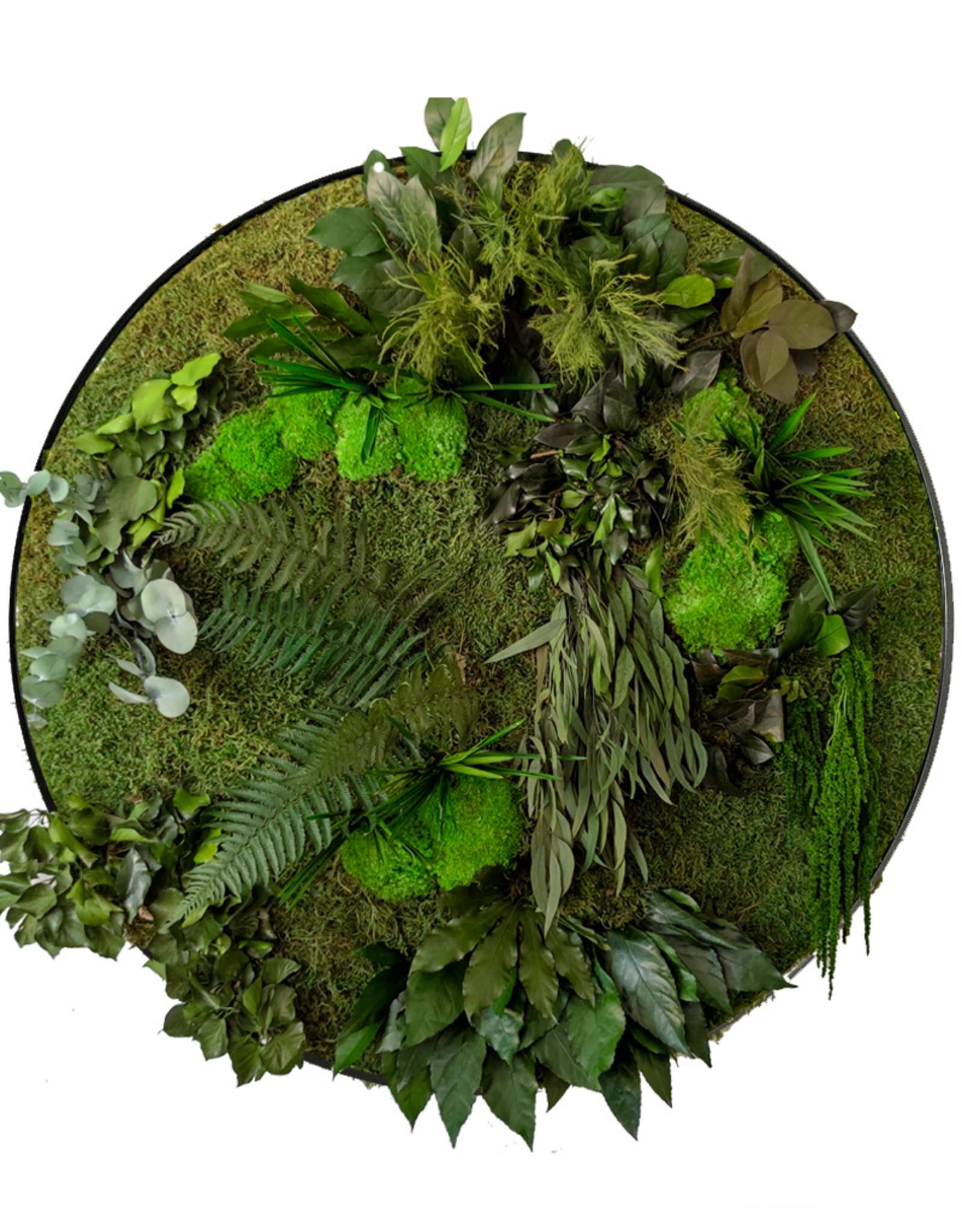 Moswens Junglecirkel stijl Jane