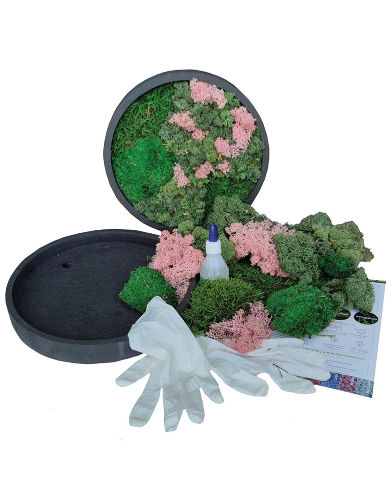 Moswens [DIY] pakket met oud roze  en groentinten