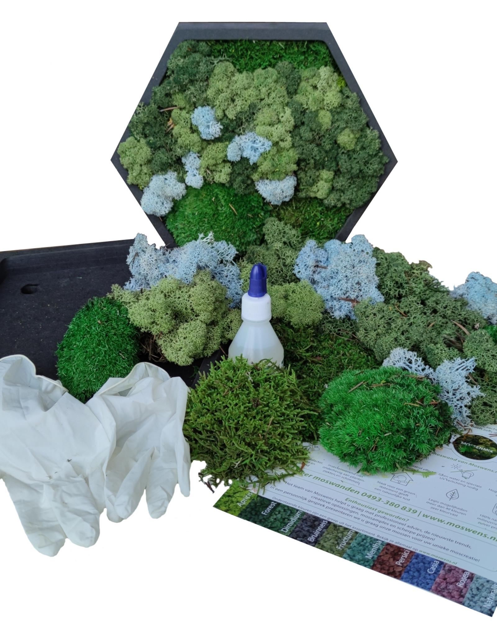 Moswens [DIY] pakket met ijsblauw en groentinten