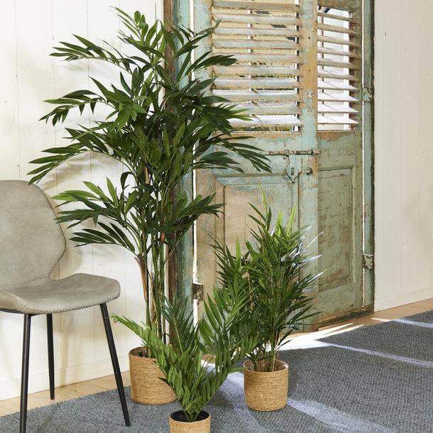 Kunst Palm Parlour 50cm
