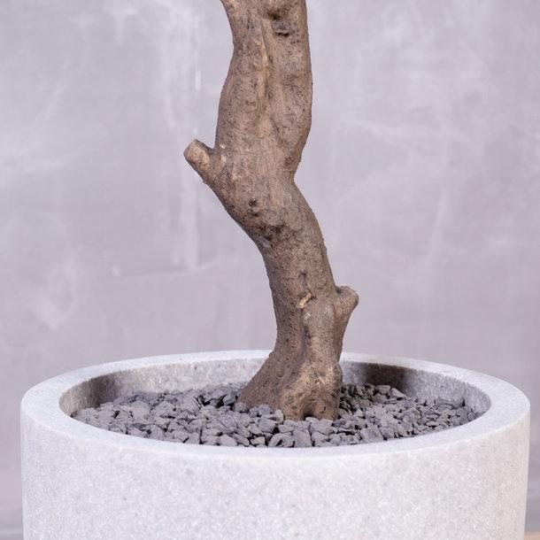 Kunst Olijfboom 200 cm