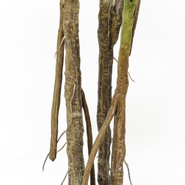 Kunst Monstera / Gatenplant 180 cm