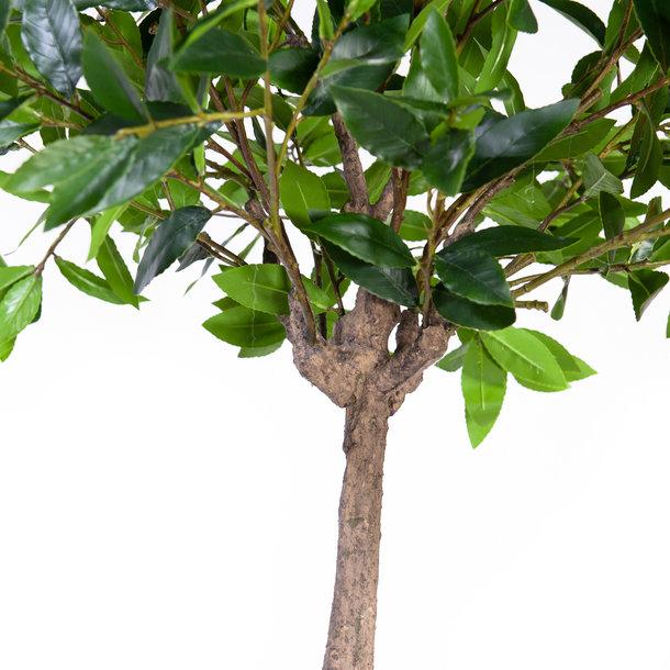 Kunst Laurier bolboompje 180 cm