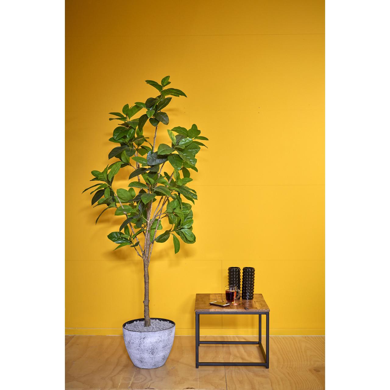 Kunst Rubberboom 180 cm
