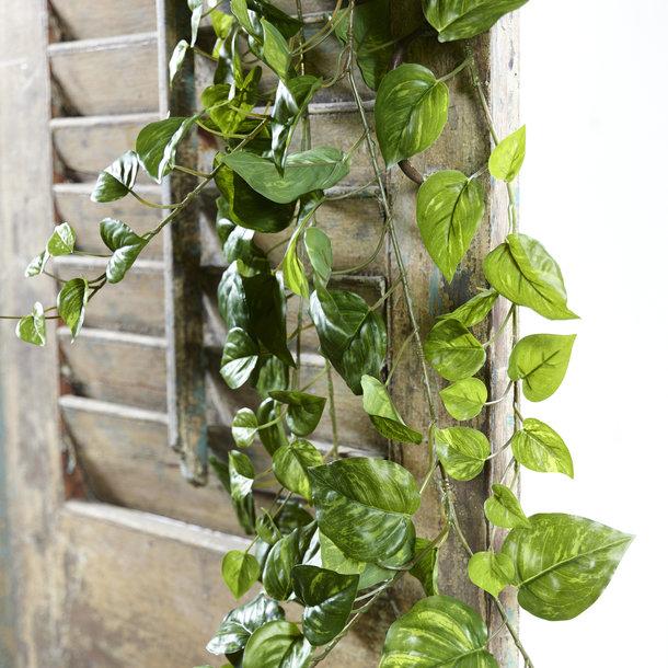 Pothos kunsthangplant 170 cm bont