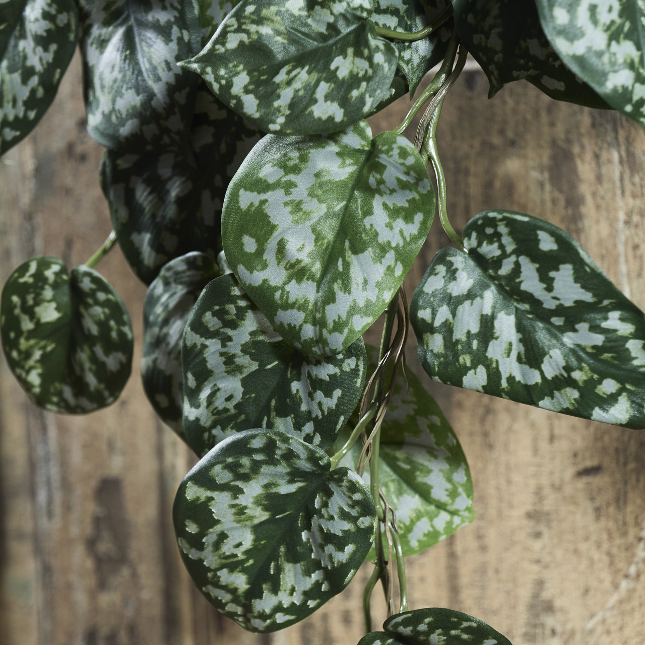 Scindapsus Pictus kunsthangplant 70 cm