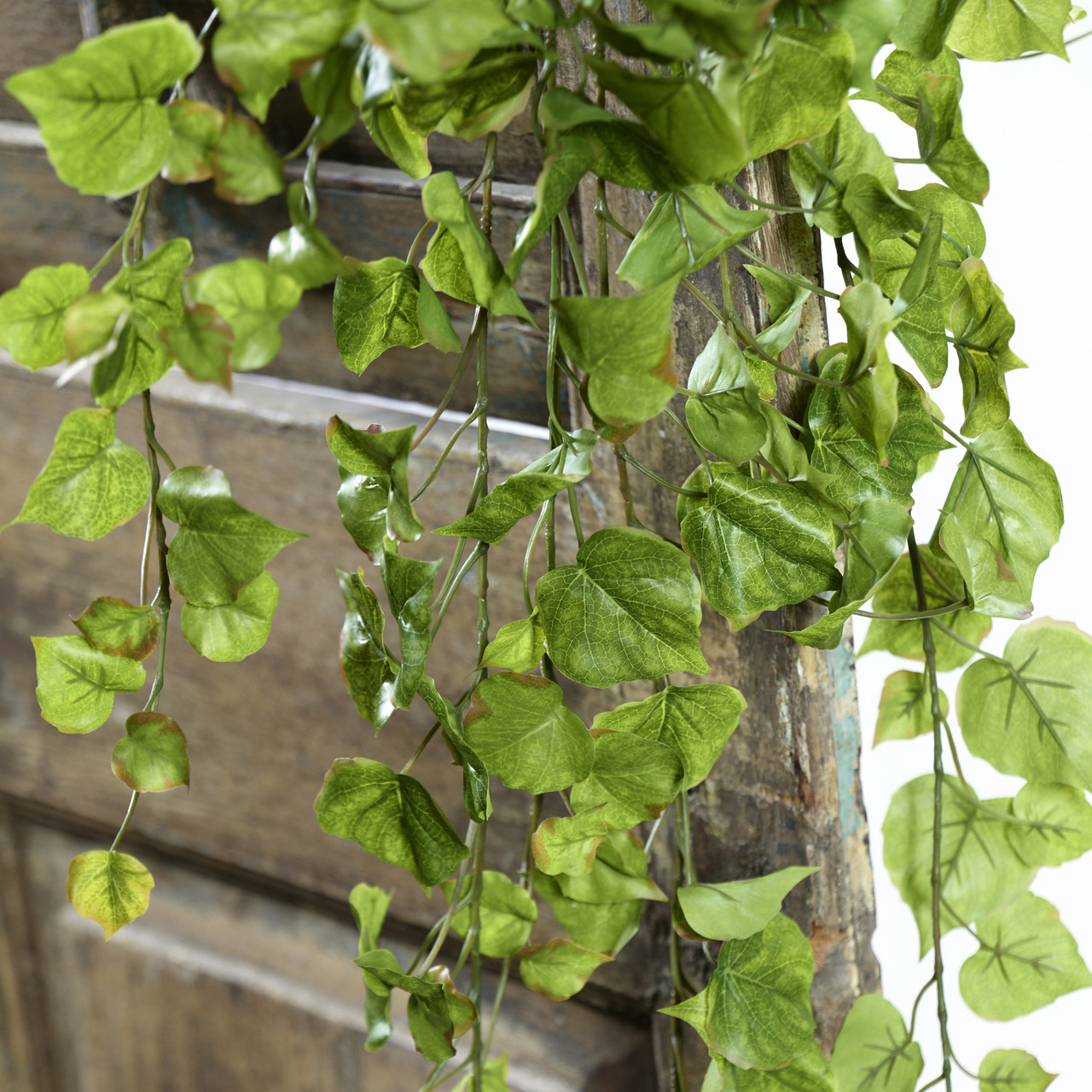 Populier kunsthangplant 80 cm