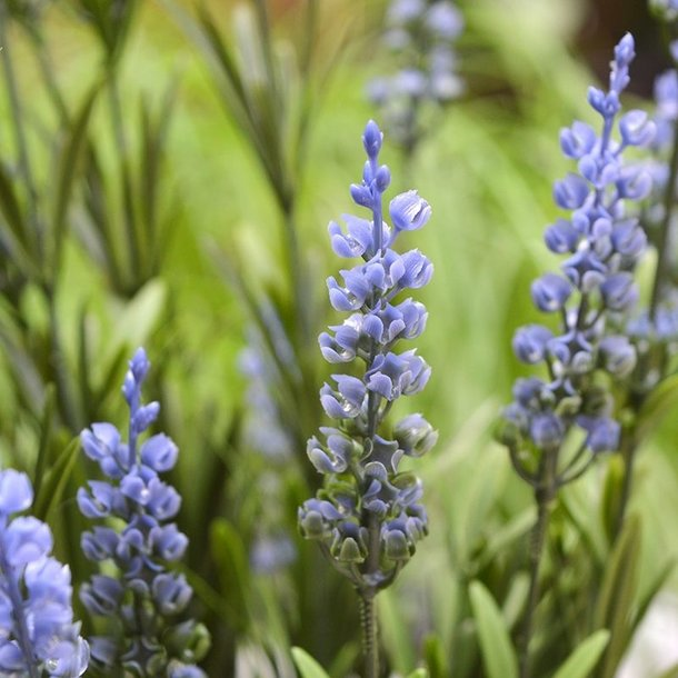 Lavendel Kunstplant 50 cm blauw UV