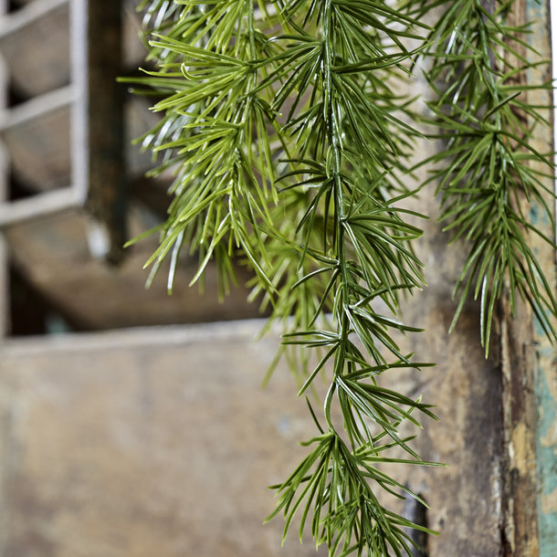 Asparagus Spengeri kunsttak 40 cm