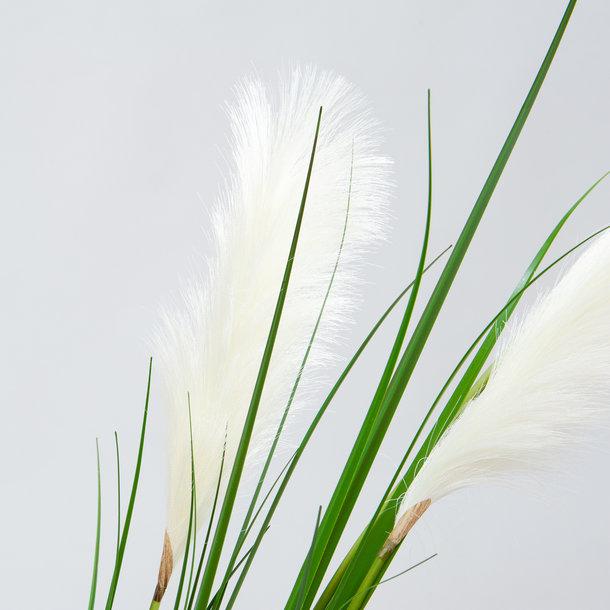 Pampasgras witte kunst pluimen 195 cm