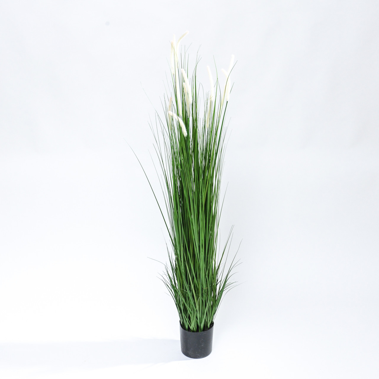 Kunst Pluimgras witte pluimen 180 cm