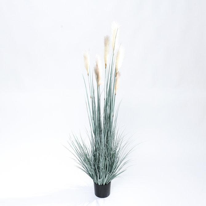 Rietgras Kunst Rietgras witte pluimen 150 cm
