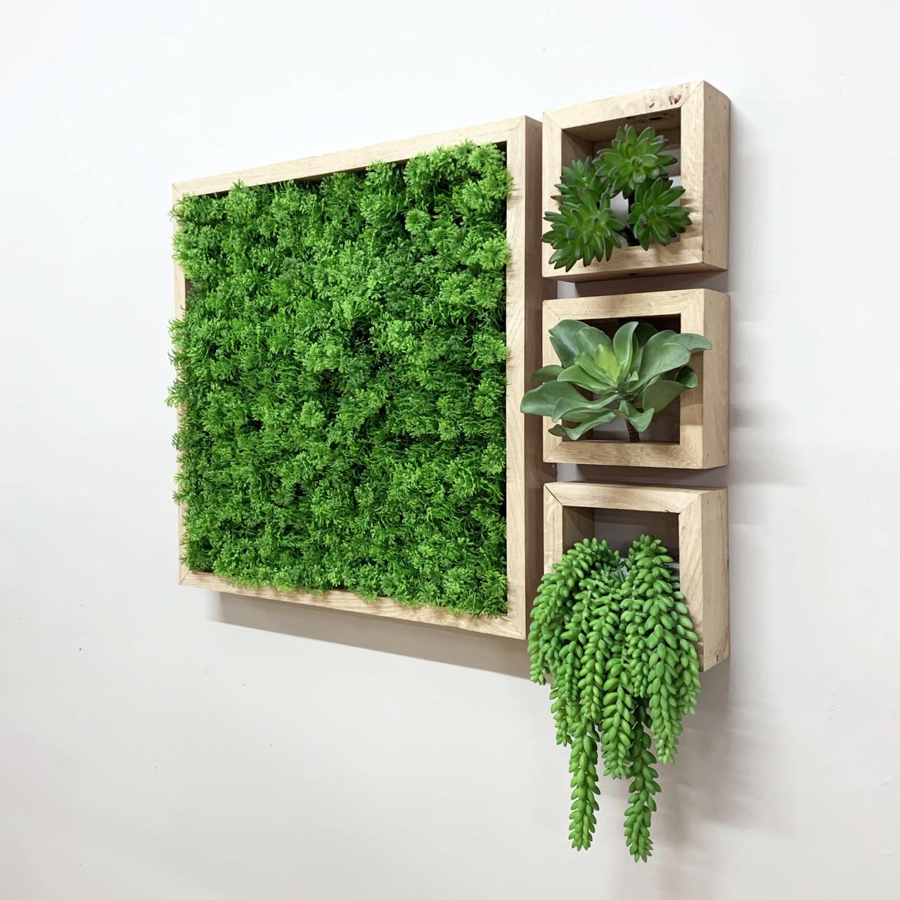 Kunst Groene Wand Frames - houten lijsten met mos / plantjes