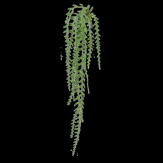 Epiphyllum Epiphyllum kunst hangplant 110 cm