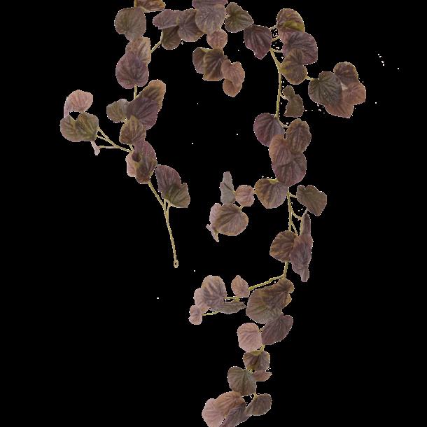 Peperomia Caperata Kunst guirlande 180 cm burgundy