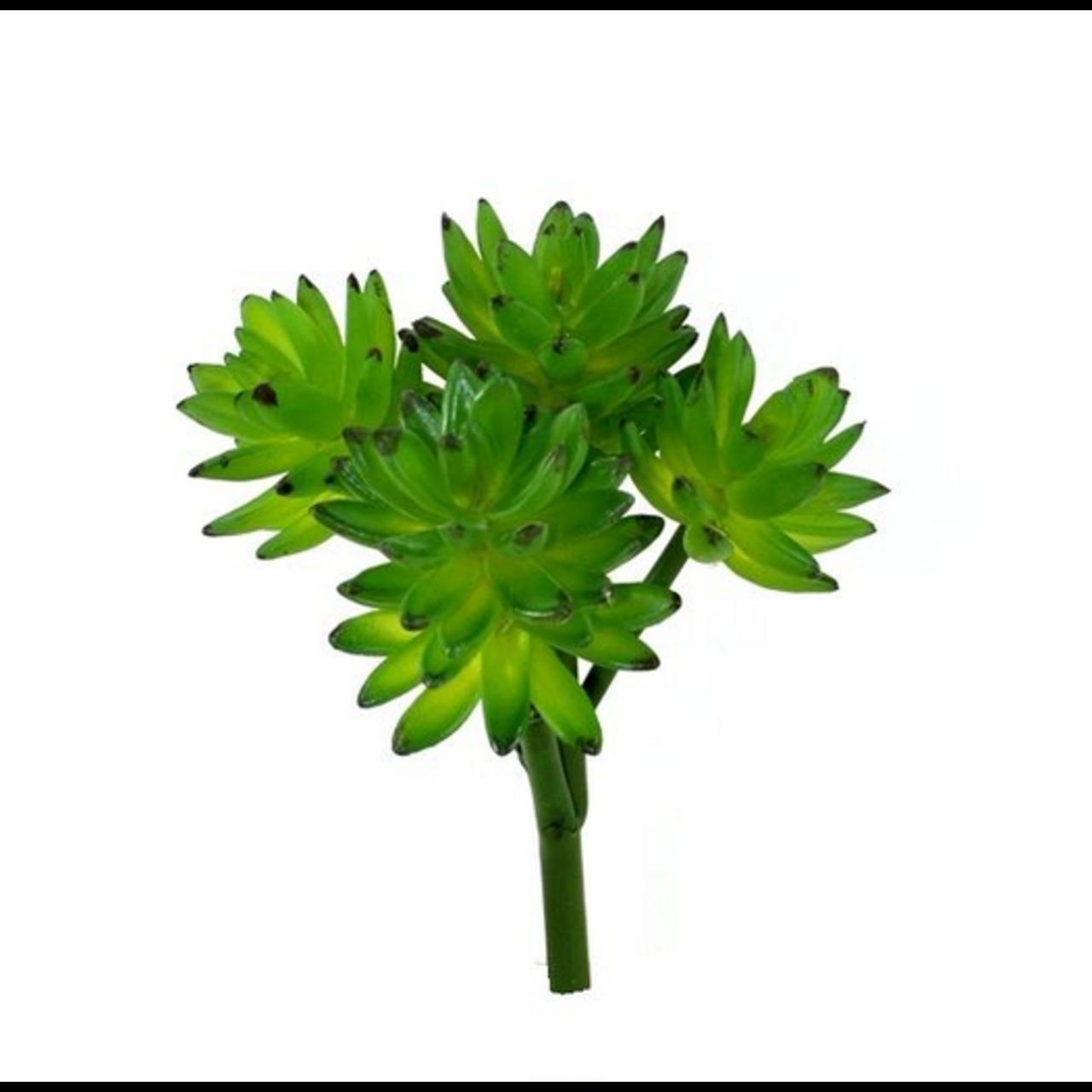 Echeveria Vetplant kunstboeket