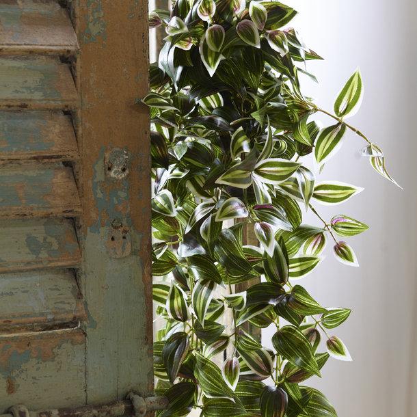 Tradescantia kunst hangplant 100 cm bont