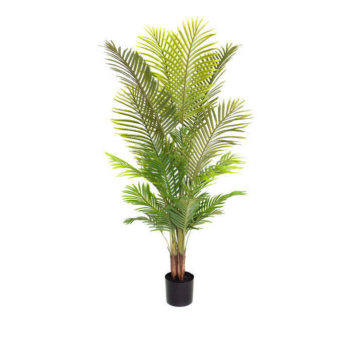 Palm Kunst Palm Areca 150 cm