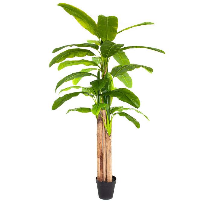 Bananen Kunst Bananenplant 260 cm