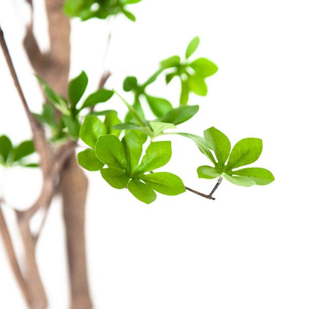 Kunst Lenteboom groen 180 cm